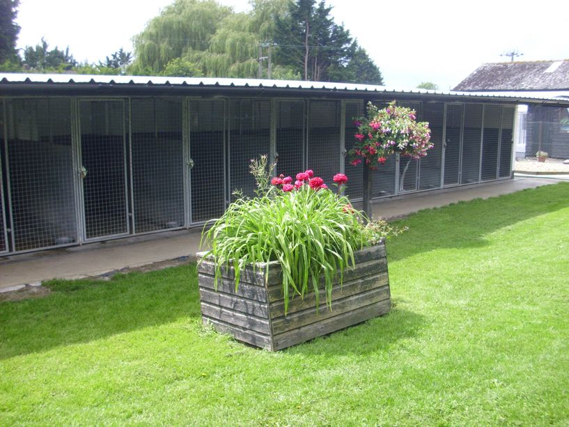 Church Farm Boarding Kennels